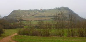 walberla